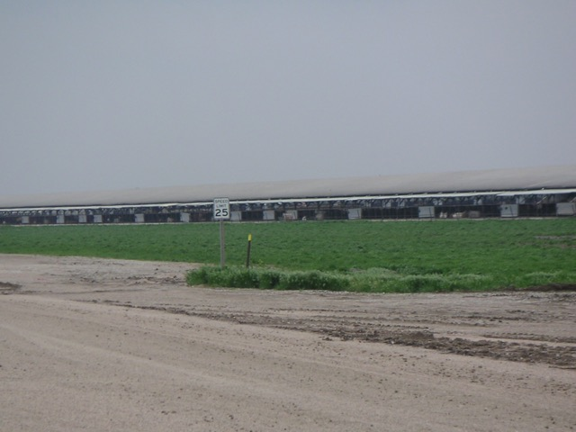 Beef Cattle Feeding Operations, Kansas